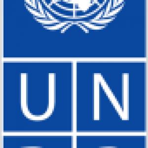 UNDP.Logo